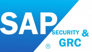 SAP GRC Training in Chennai, SAP GRC Training Institute in Chennai