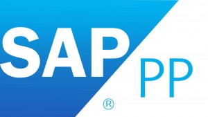 SAP PP Course in Chennai, Best SAP PP Training Institute in Chennai