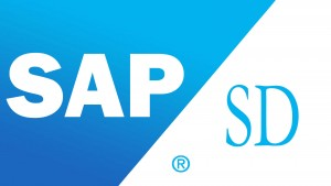 SAP SD Training in Chennai, Best SAP SD Training in Chennai