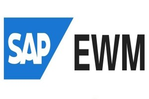SAP EWM Training in Chennai